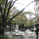 学習院女子大キャンパス。中央、白いテーブル脇のWish Tree(願いの木)を撮るつもりが……。